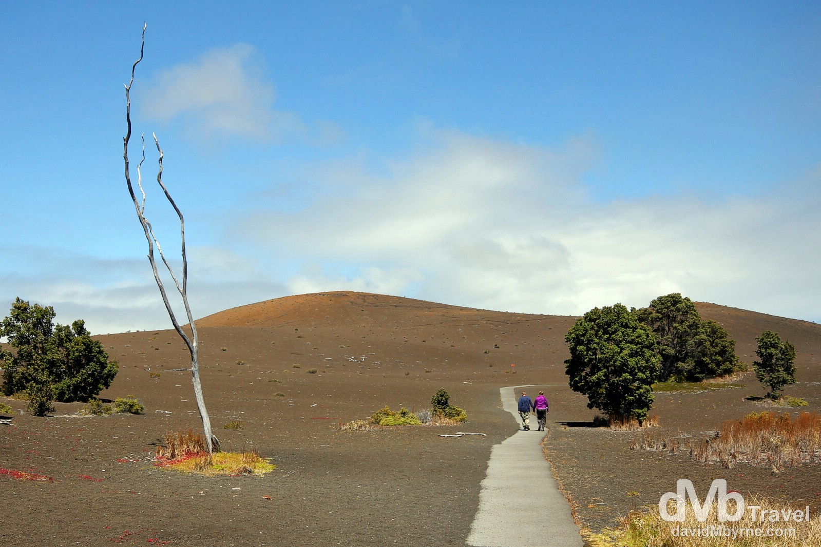 Walking the Desolation Trail in Hawaii Volcanoes National Park, the Big Island of Hawai'i, USA. March 2nd 2013.