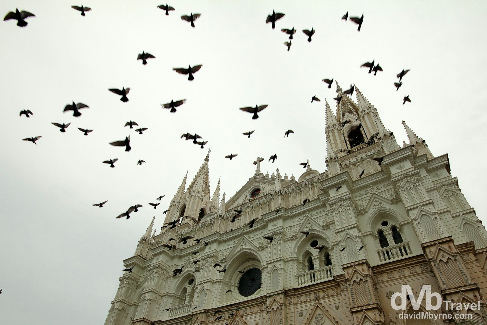 Pigeons flying in in front of Santa Ana's neo-Gothic Cathedral, Santa Ana, Western El Salvador. May 27th 2013.