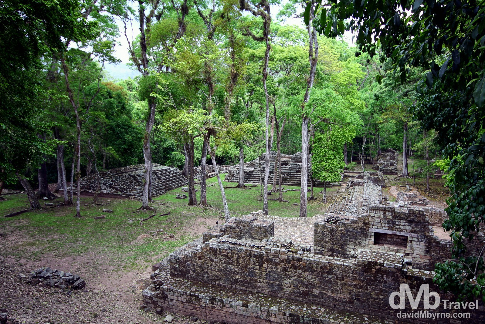 The Cemetery section of the Copan Architectural Site, western Honduras. June 7th 2013.