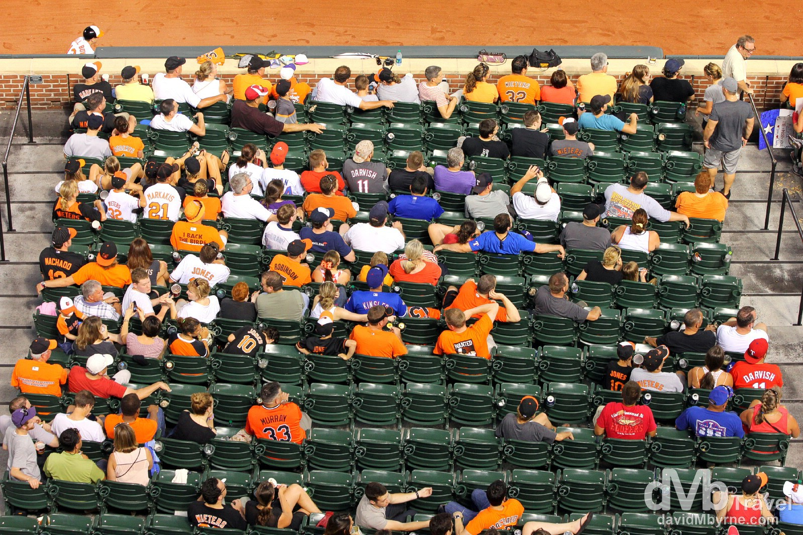 Oriole fans at Oriole Park at Camden Yards, Baltimore, Maryland, USA. July 10th 2013.