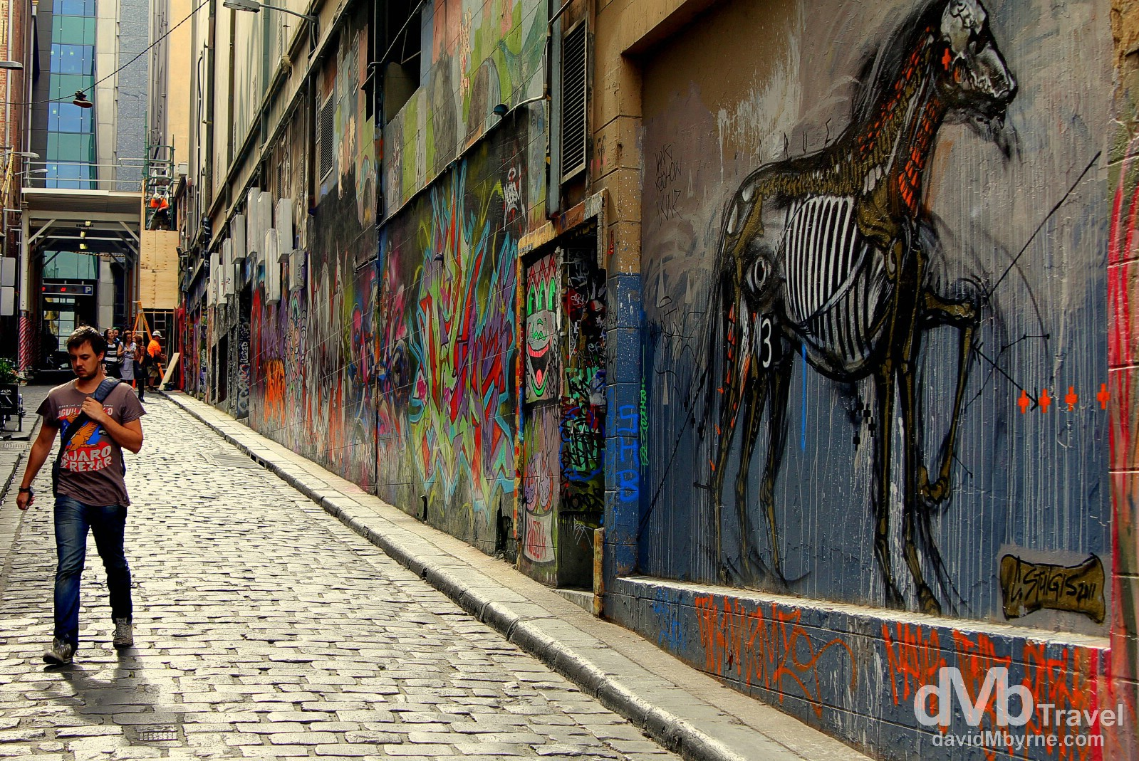 Graffiti, Hosier Lane, Melbourne, Victoria, Australia. April 19th 2012.