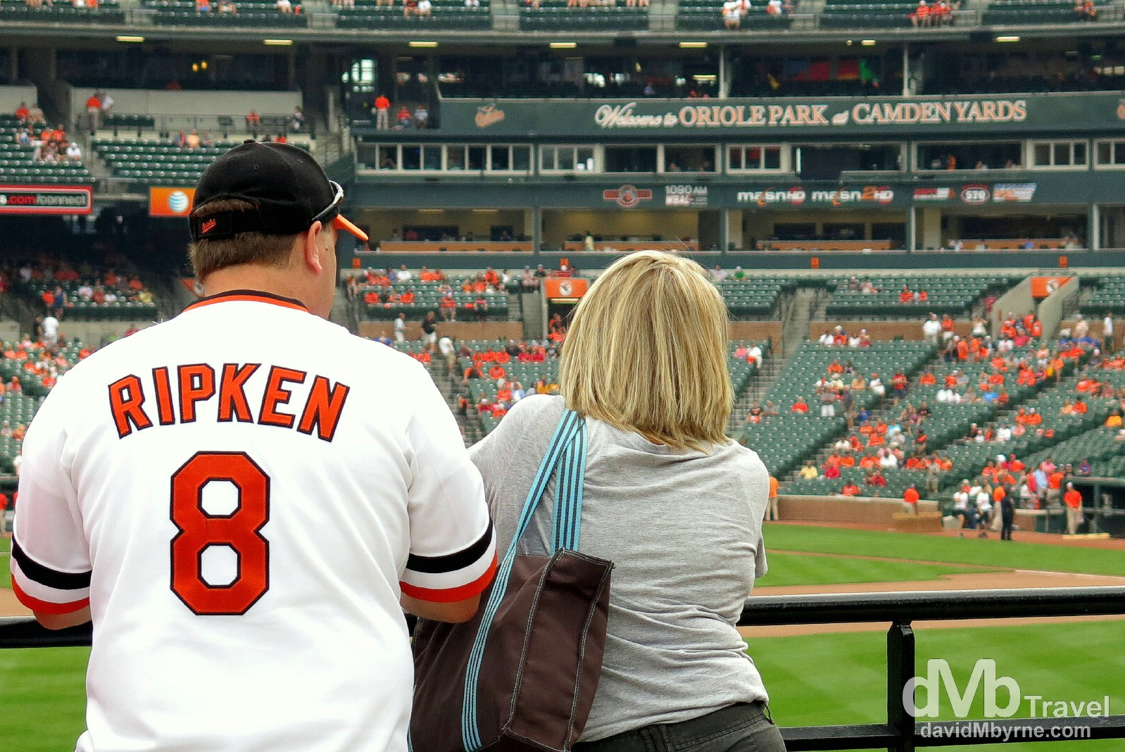 Oriole fans at Oriole Park at Camden Yards, Baltimore, Maryland, USA. July 9th 2013.