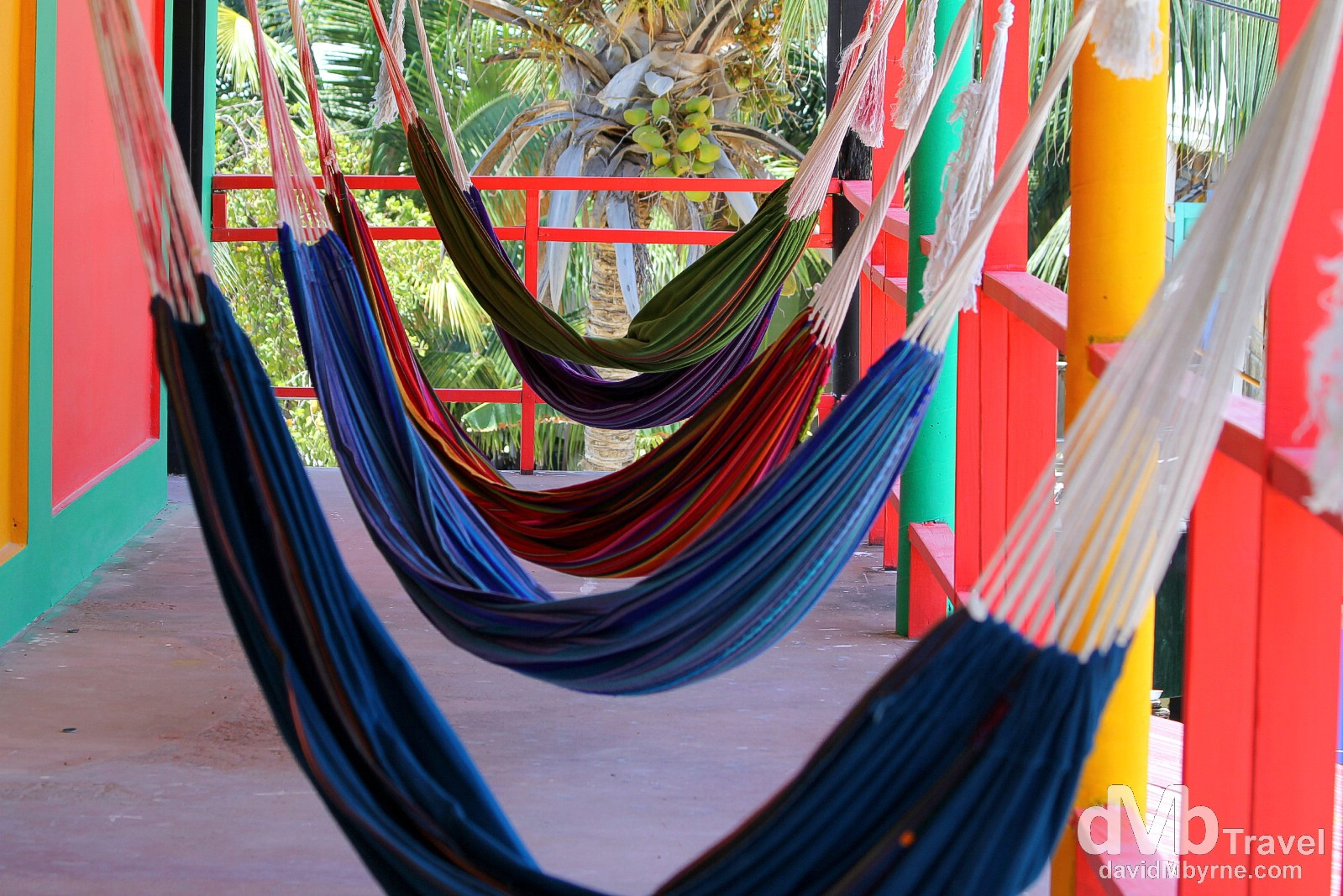 Plenty of options to laze around. Hammocks in Dirty McNastys Hostel, home for 3 night on Caye Caulker, Belize. May 14th 2013.