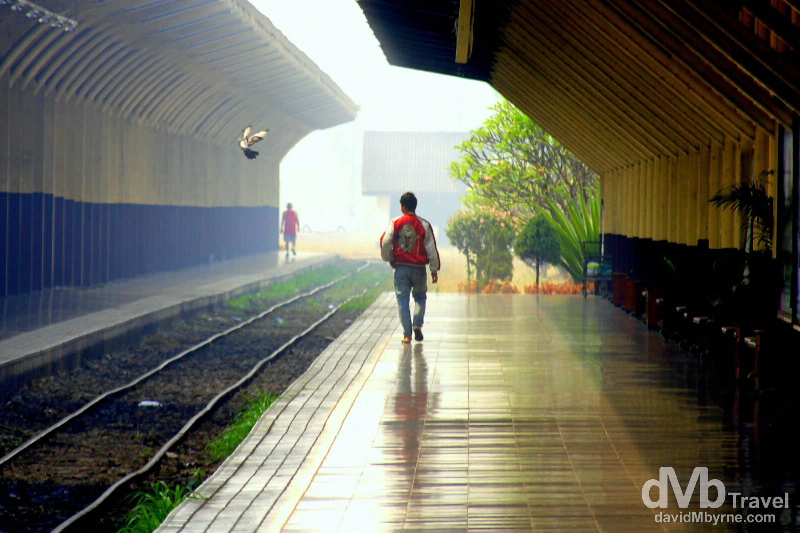 The platform of Chiang Mai train station just after getting off the 16-hour train trip from Bangkok. I saw this guy walking down the platform away from me and the scene immediately struck me as photogenic. So I reached for my camera and snapped this image just as a pigeon was flying down towards the tracks from the platform roof overhead. I never even noticed the pigeon until reviewing the image much later. It was a welcomed addition to the shot. Chiang Mai Railway Station, northern Thailand. March 9th 2012.