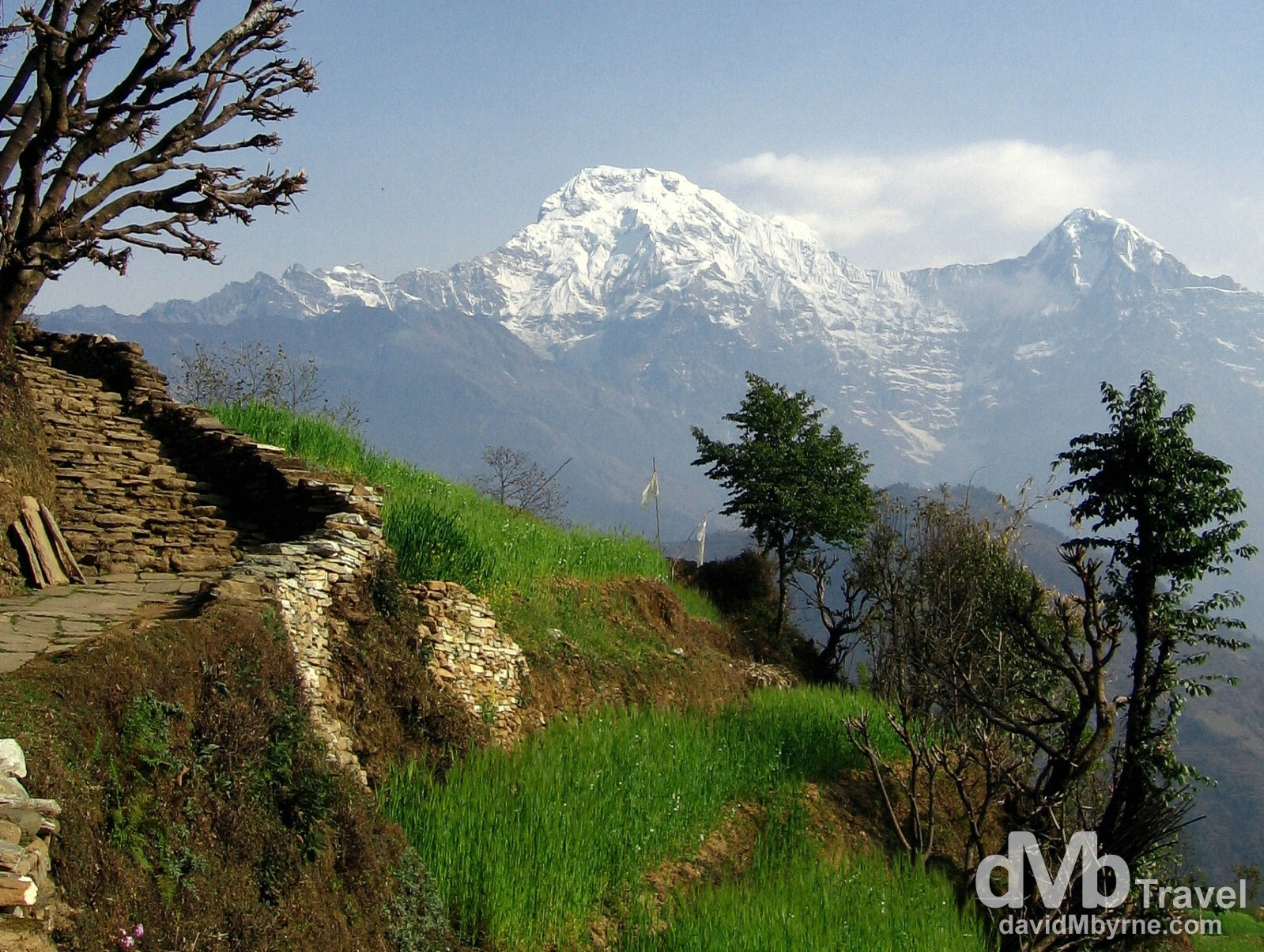 Poon Hill Trek, Nepal (Day 2)