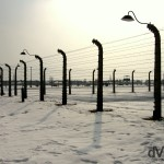Fencing and shadows in the Birkenau Concentration Camp, Brzezinka, Poland. March 7th 2006.