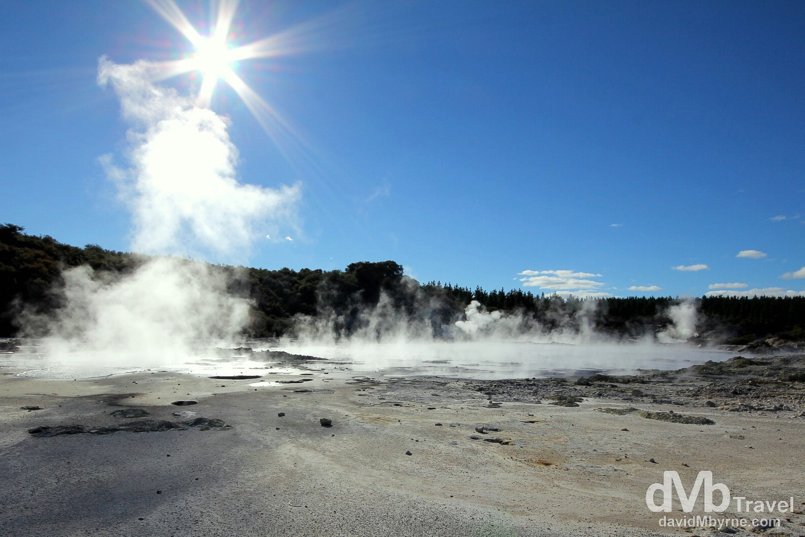 Geothermal activity in the Hell's Gate geothermal reserve, Rotorua, North Island, New Zealand. May 5th 2012.