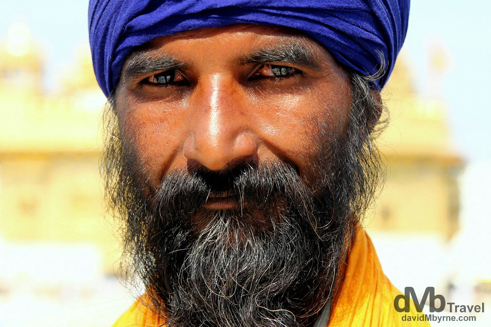 A Sikh devotee in the grounds of the Golden Temple, Amritsar, India. October 9th 2012.