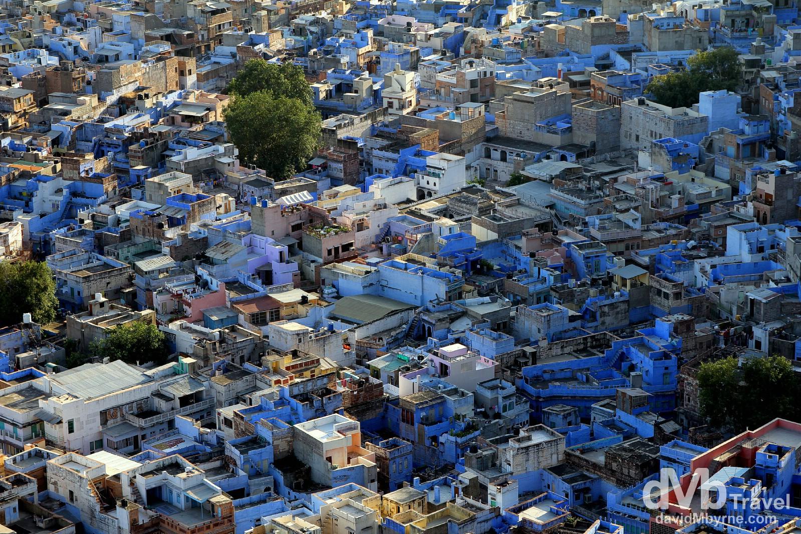 Jodhpur, The Blue City, as seen from the walls of Mehrangarh Fort. Jodhpur, Rajasthan, India. October 6th 2012.