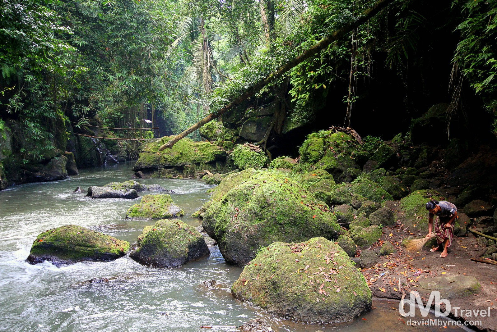 Jungle scenery near Goa Gajah (Elephant Cave) on the outskirts of Ubud, Bali, Indonesia. June 19th 2012.