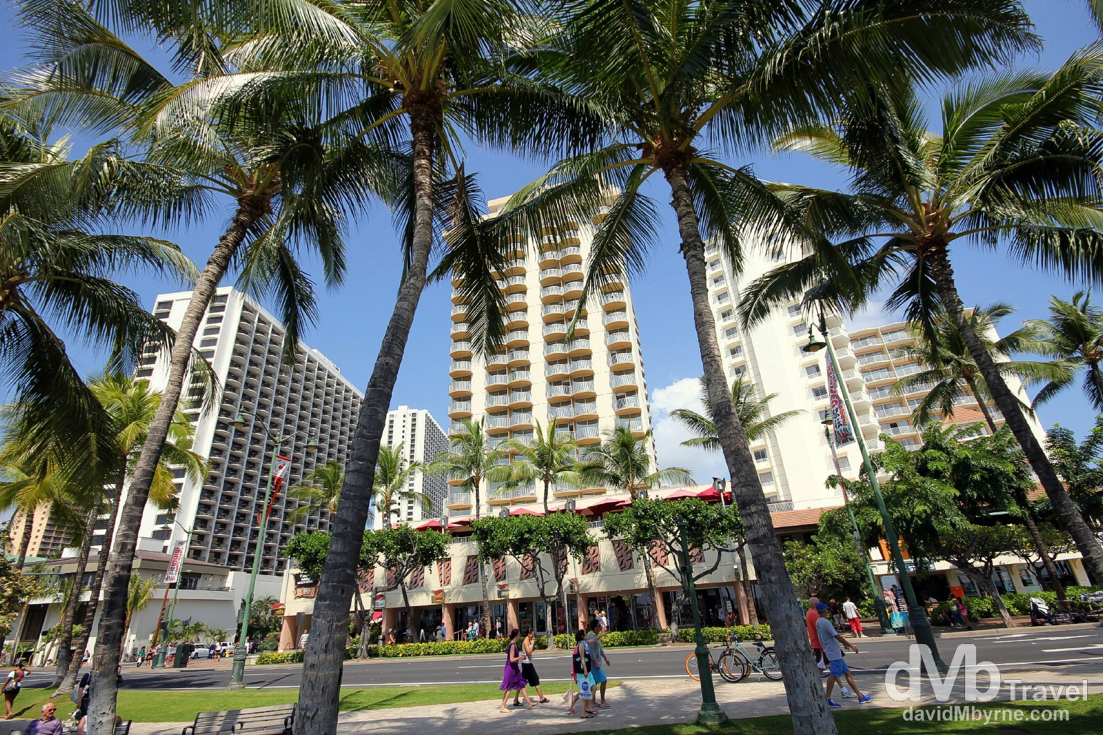 Palm trees & tower blocks on Kalakaua Avenue fronting Waikiki Beach on Oahu, Hawaii, USA. March 8th 2013.