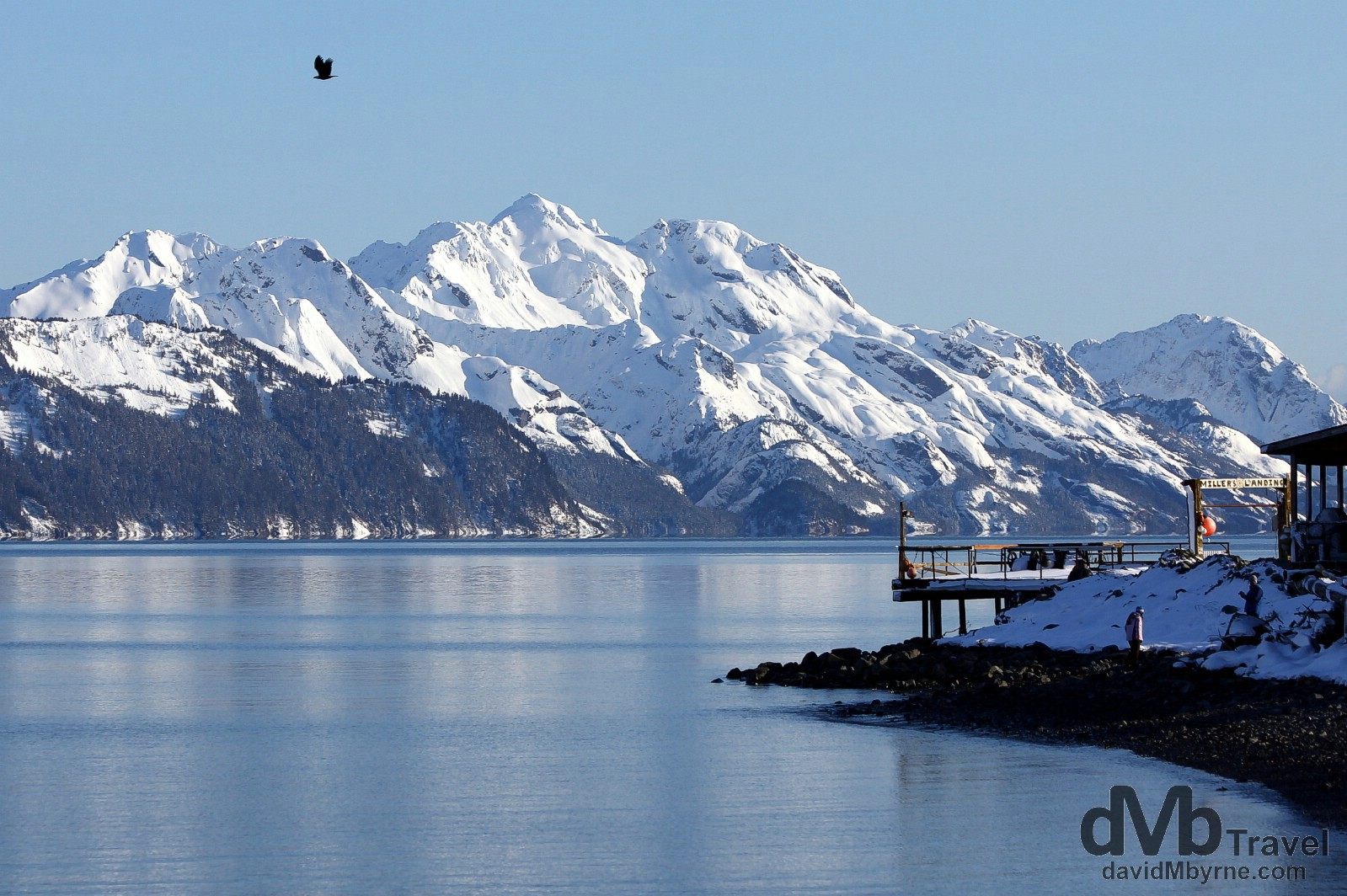 Millers Landing at Lowell Point on Resurrection Bay, Kenai Peninsula, Alaska, USA. March 15th 2013.
