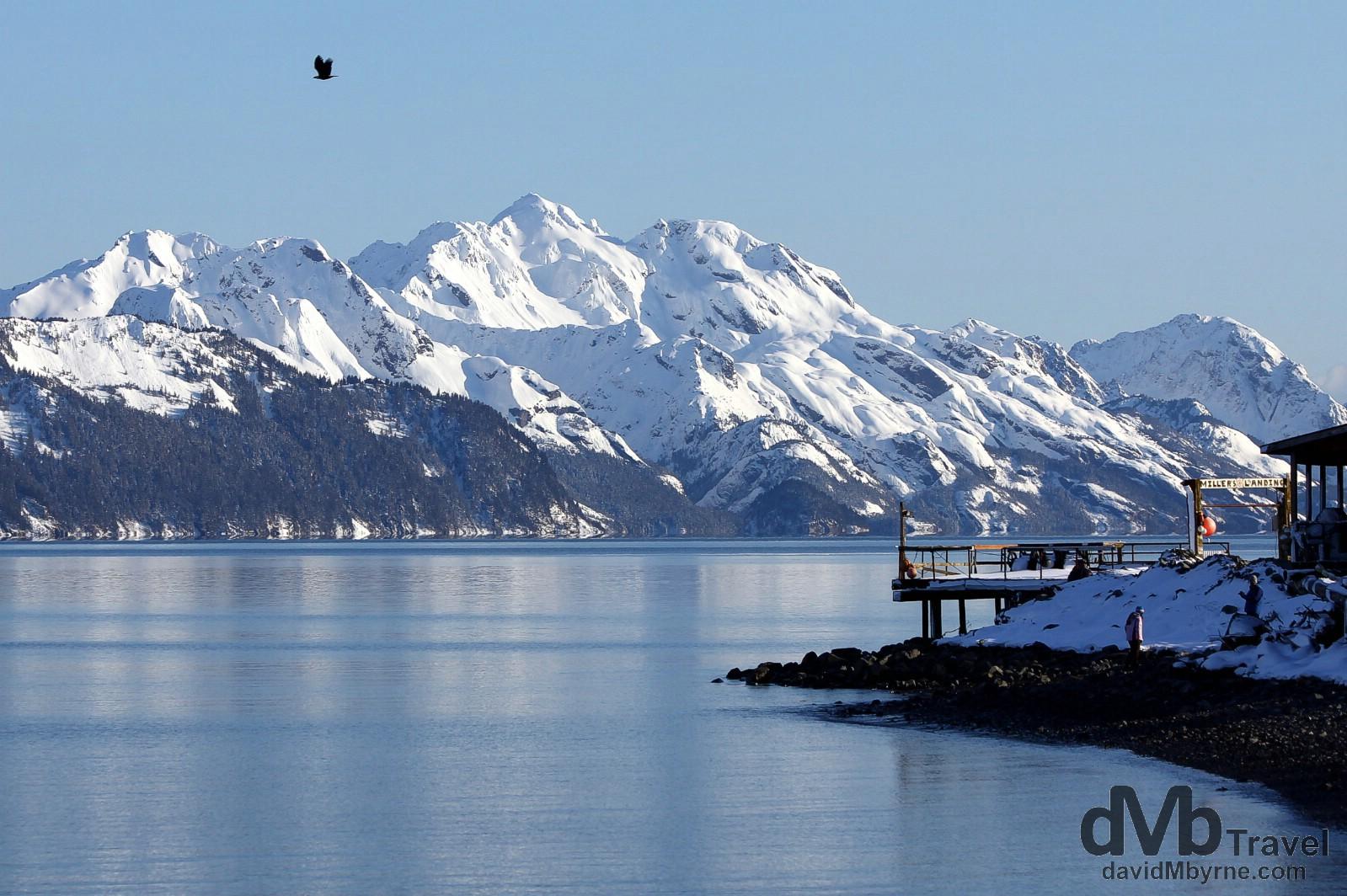 Millers Landing at Lowell Point on Resurrection Bay, Kenai Peninsula, Alaska, USA. March 15th 2013.