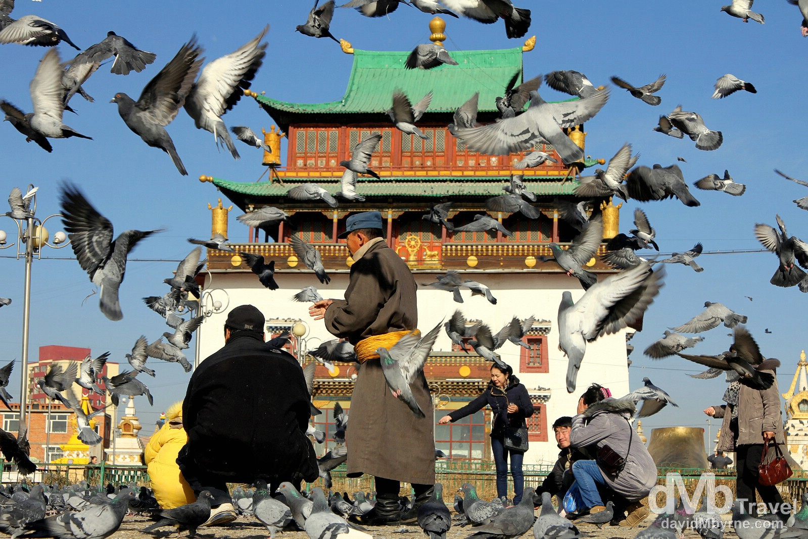 Pigeons (lots of them) & people in front of Migjid Janraisig Sum in Ulan Bator, Mongolia. November 1st 2012.