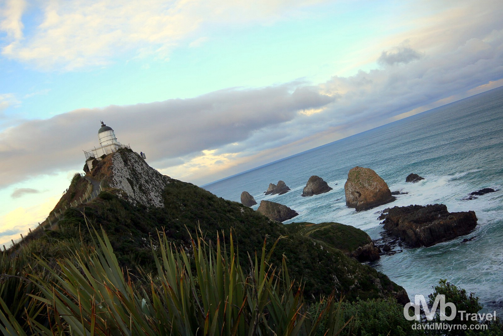 Nugget Point, The Catlins, South Island, New Zealand. May 28th 2012.