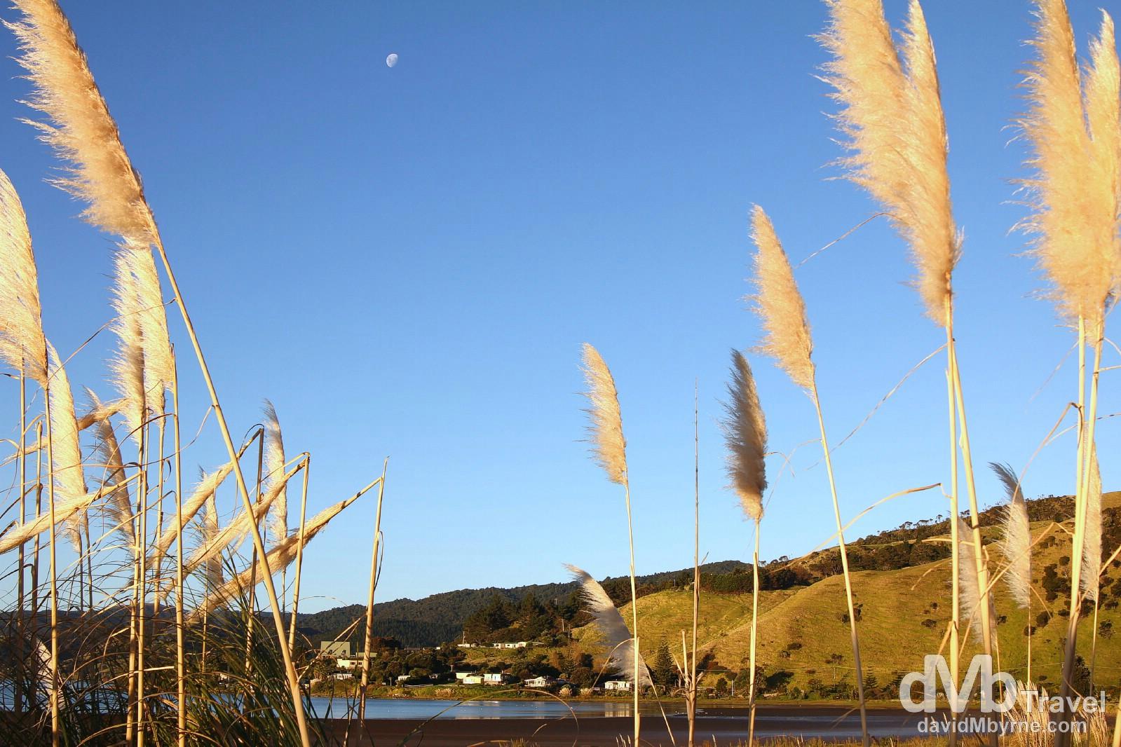 Late afternoon sunlight bathing Port Waikato, North Island, New Zealand. May 2nd 2012.