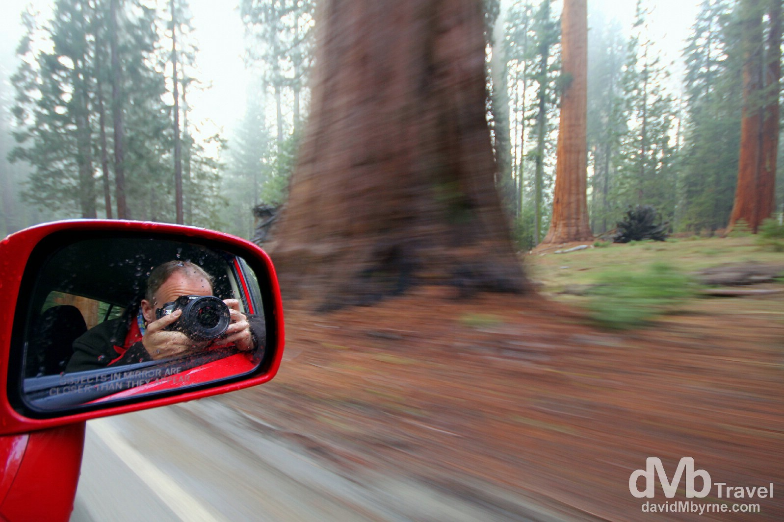 Selfie. Sequoia National Park, California, USA. April 2nd 2013.