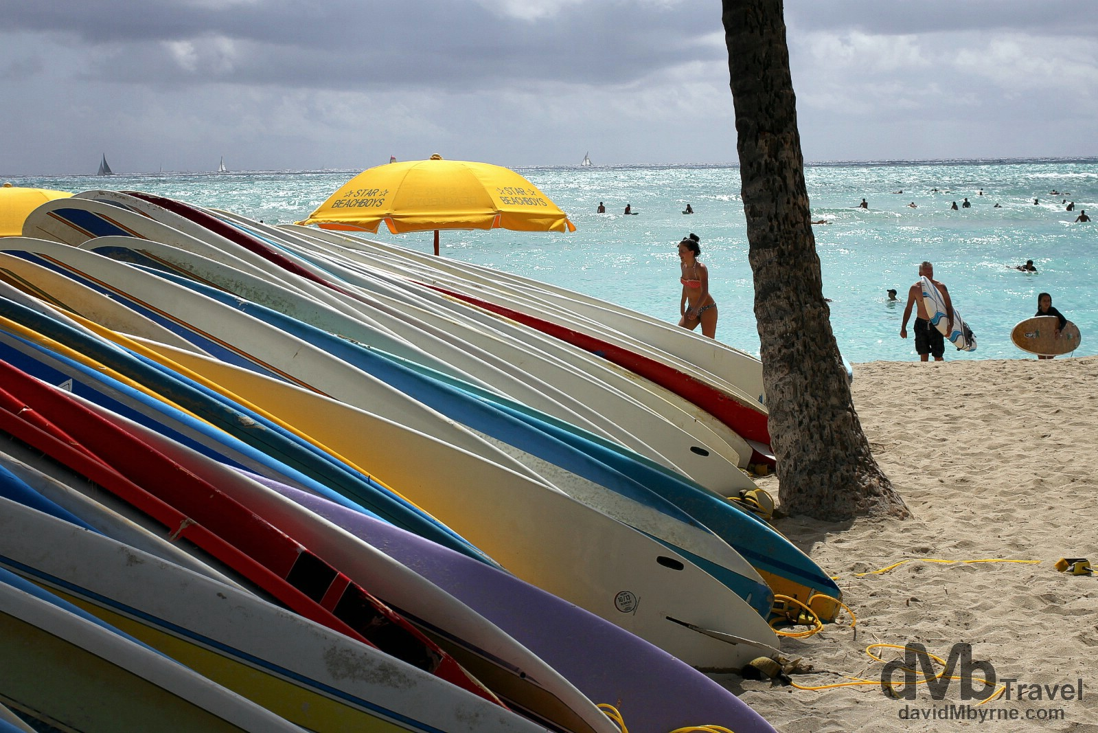 Surfboards lined up on a section of Waikiki Beach, Oahu, Hawaii, USA. March 9th 2013.