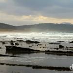 Tawharanui Regional Park, North Island, New Zealand. April 27th 2102.