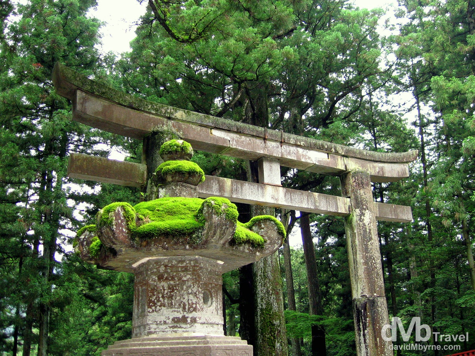 The torii gate at the entrance to the Toshogu Shinto shrine in Nikko, Honshu, Japan. July 17th 2005.