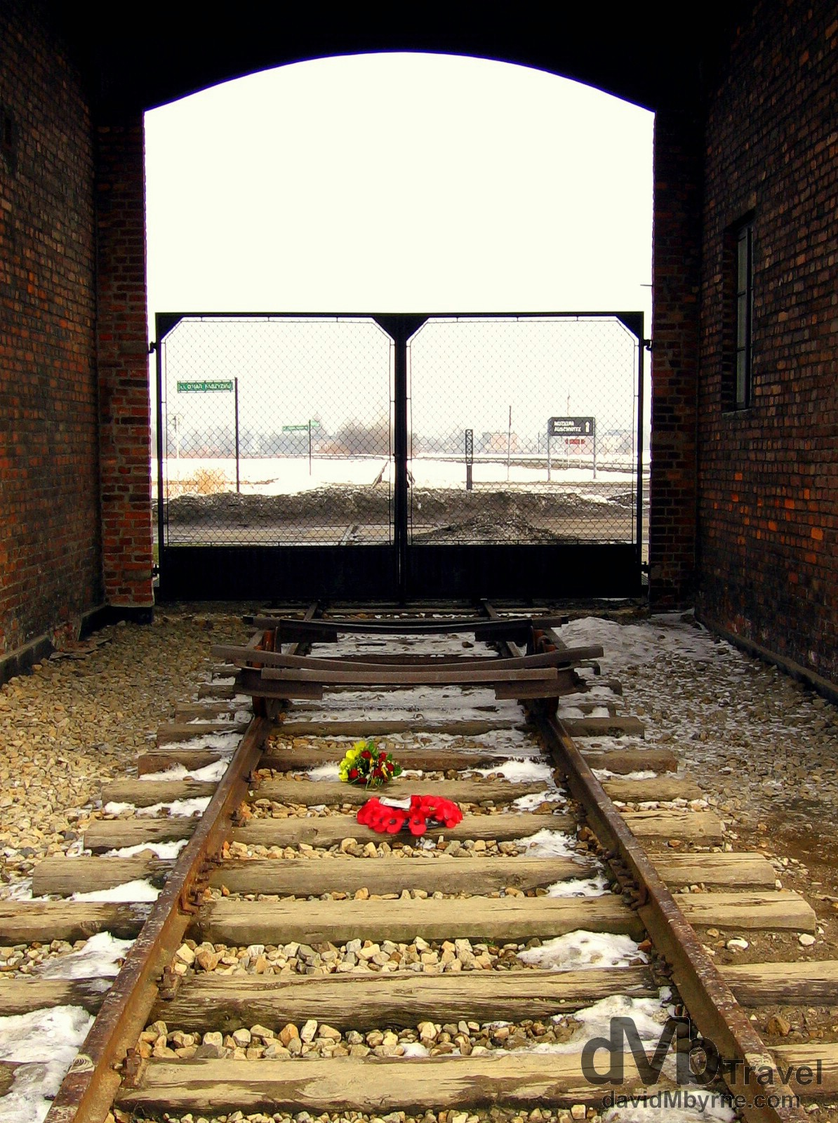 Two small bouquets on the tracks at the entrance to the Birkenau Concentration Camp, Brzezinka, Poland. March 7th 2006.