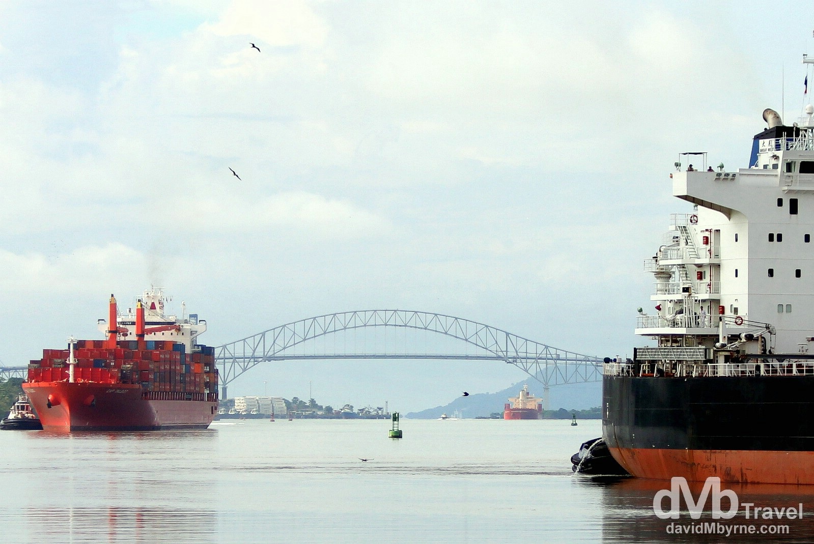 A (slow) convoy of cargo ships approaching the Miraflores Locks of the Panama Canal, Panama. July 1st 2013.