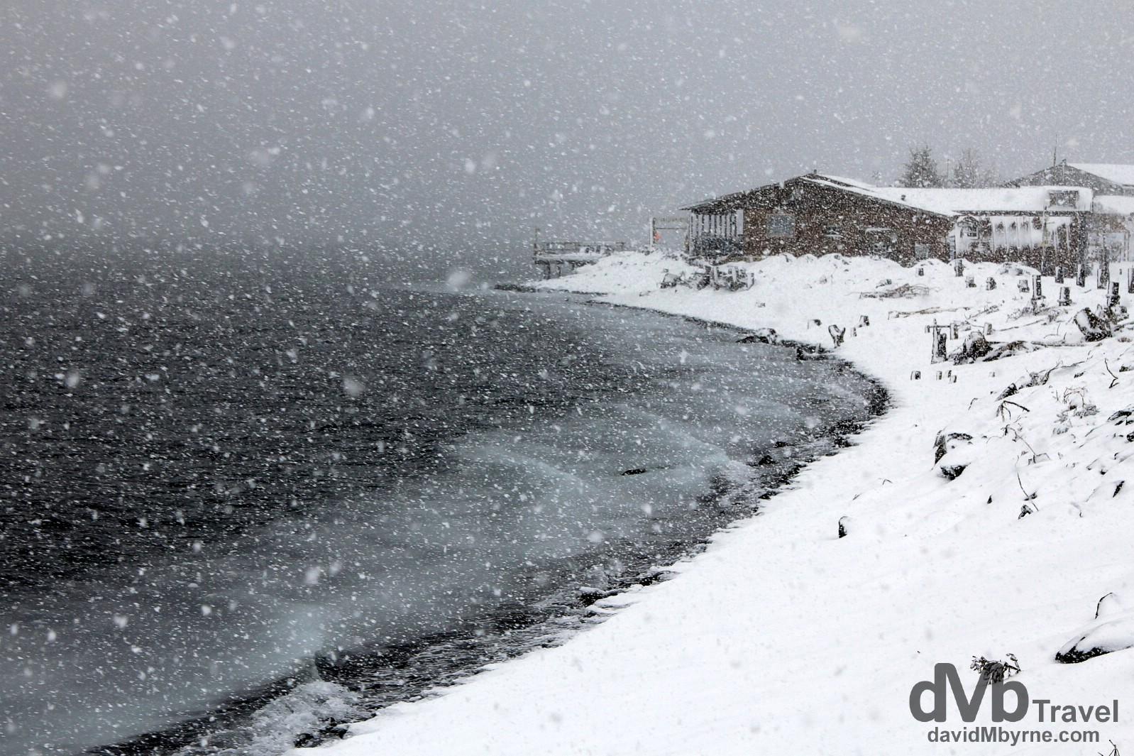 Snow on Resurrection Bay, Lowell Point, Kenai Peninsula, Alaska, USA. March 14th 2013.