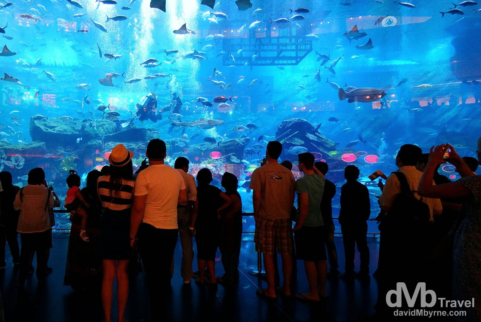The viewing window of Dubai Aquarium in The Dubai Mall, Dubai, UAE. April 14th, 2014.