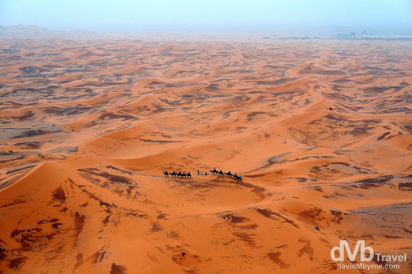 A sunset camel train as seen from on high in the desert of Erg Chebbi, Morocco. May 18th, 2014.