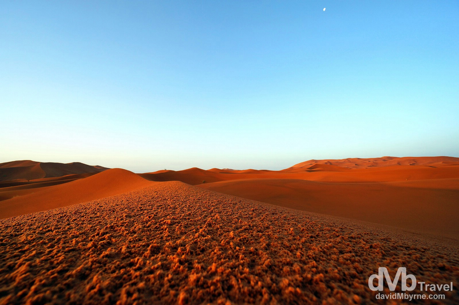 The moon is still in the sky as the sun rises over the red sands of the Erg Chebbi sand dunes in Morocco. May 19th, 2014.