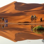 A sunrise camel train reflection in the desert of Erg Chebbi, Morocco. May 19th, 2014.
