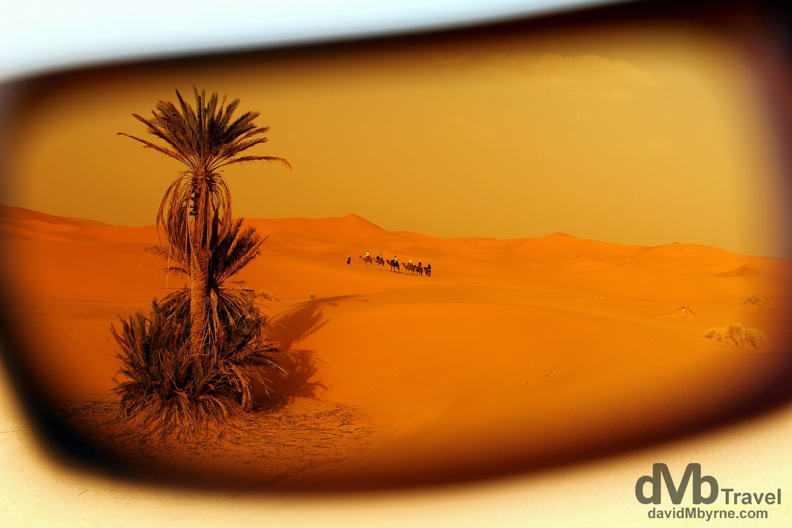 As seen through sunglasses, a camel train on the Erg Chebbi sand dunes near the village of Merzouga, Morocco. May 19th, 2014.