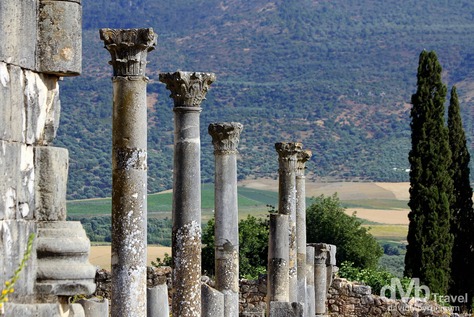 Columns of the UNESCO-listed Roman ruins of Volubilis, Morocco. May 25th, 2014.