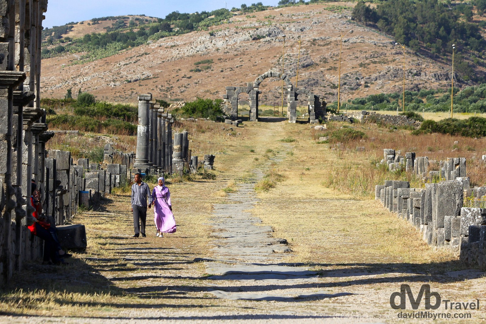 Decumanus Maximus, the main street of the UNESCO-listed Roman site of Volubilis in Morocco. May 25th, 2014