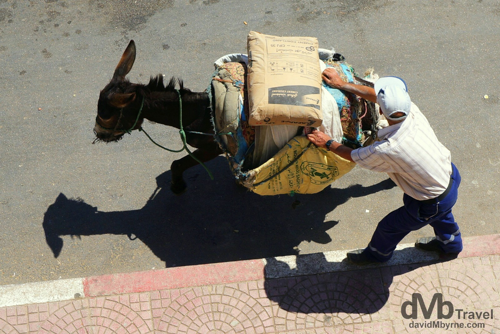 A beast of burden being helped along on the streets of Moulay Idriss, northern Morocco. May 25th, 2014.