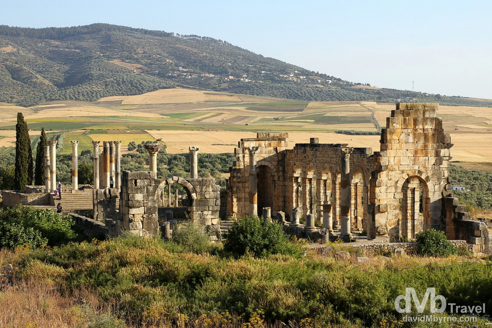 An overview of the Forum, Capital & Basilica of the UNESCO-listed Roman ruins of Volubilis, northern Morocco. May 25th, 2014.