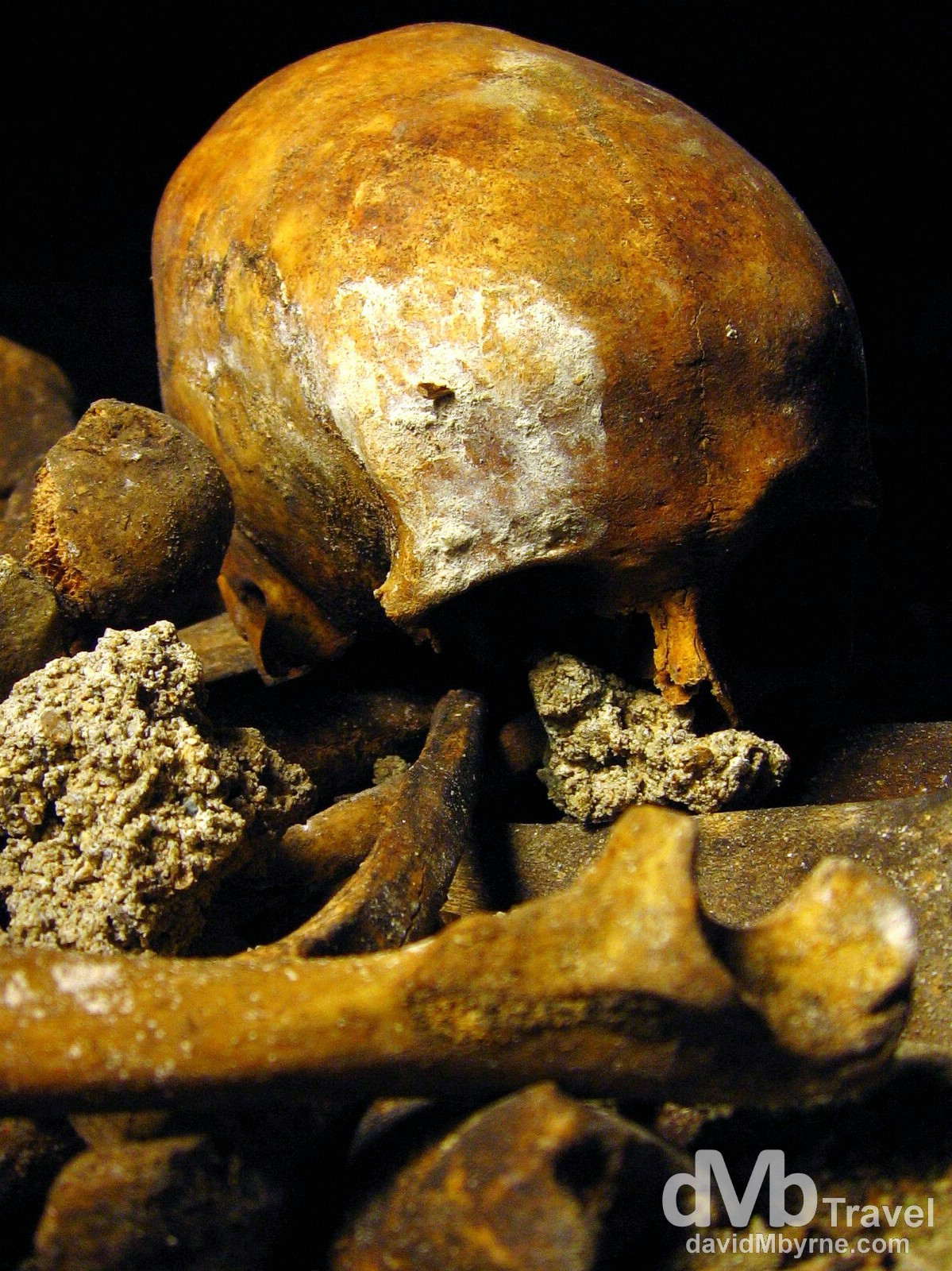 A skull in the Catacombs, Paris, France. August 21st, 2007.