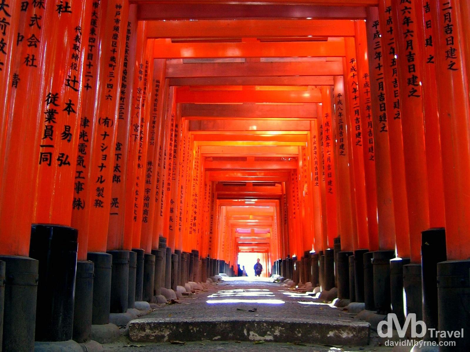 A passageway of Torii gates at the Fushimi Inari Taisha shrine, Kyoto, Japan. November 21st, 2007.