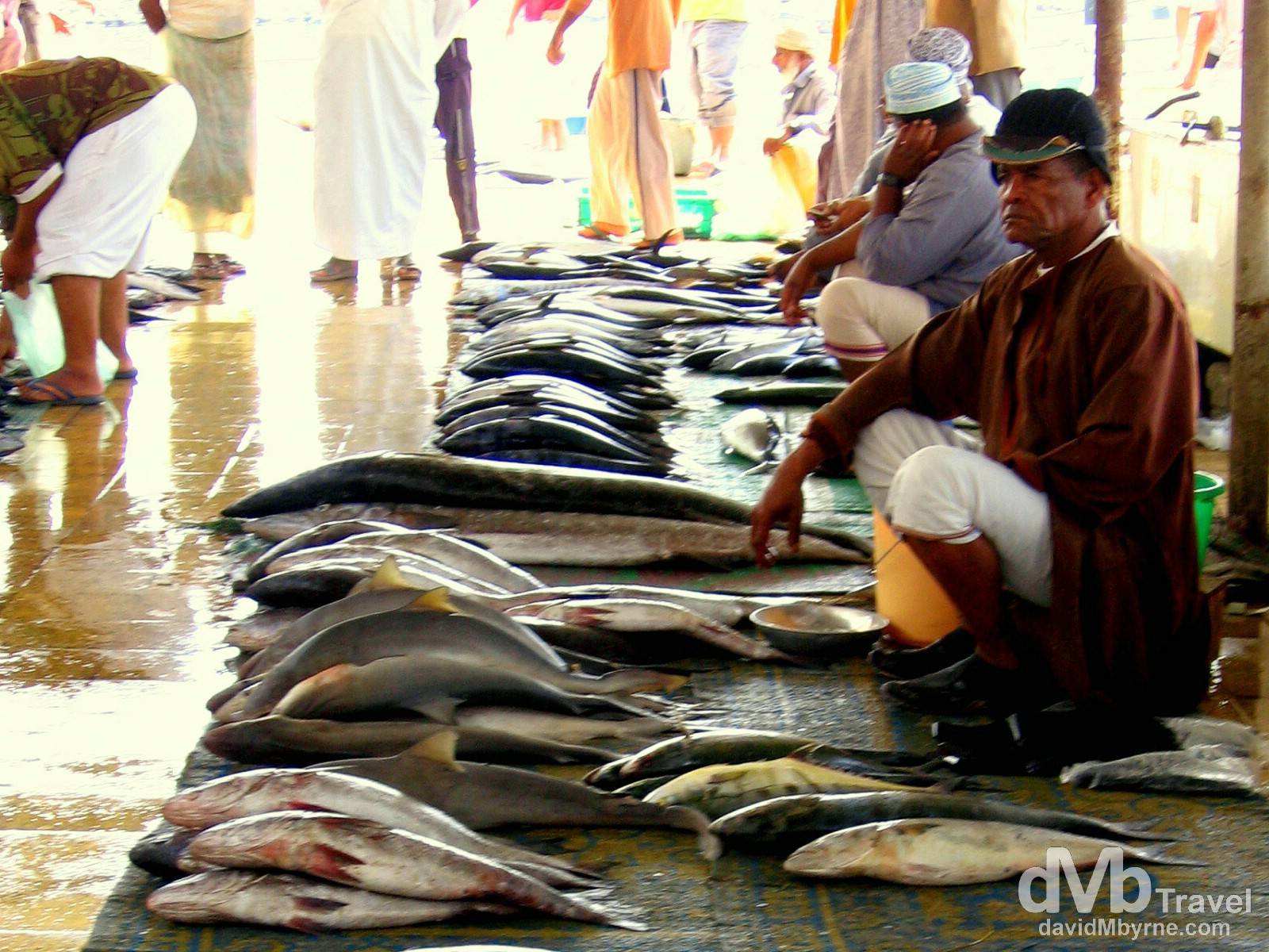 Fish market in Muscat, Oman. April 6, 2008.
