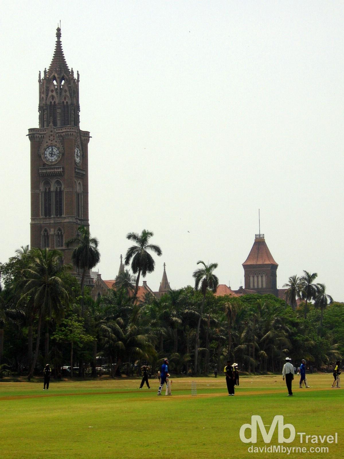 A game of cricket on the Oval Maidan in Mumbai/Bombay, Maharashtra, India. April 4, 2008.