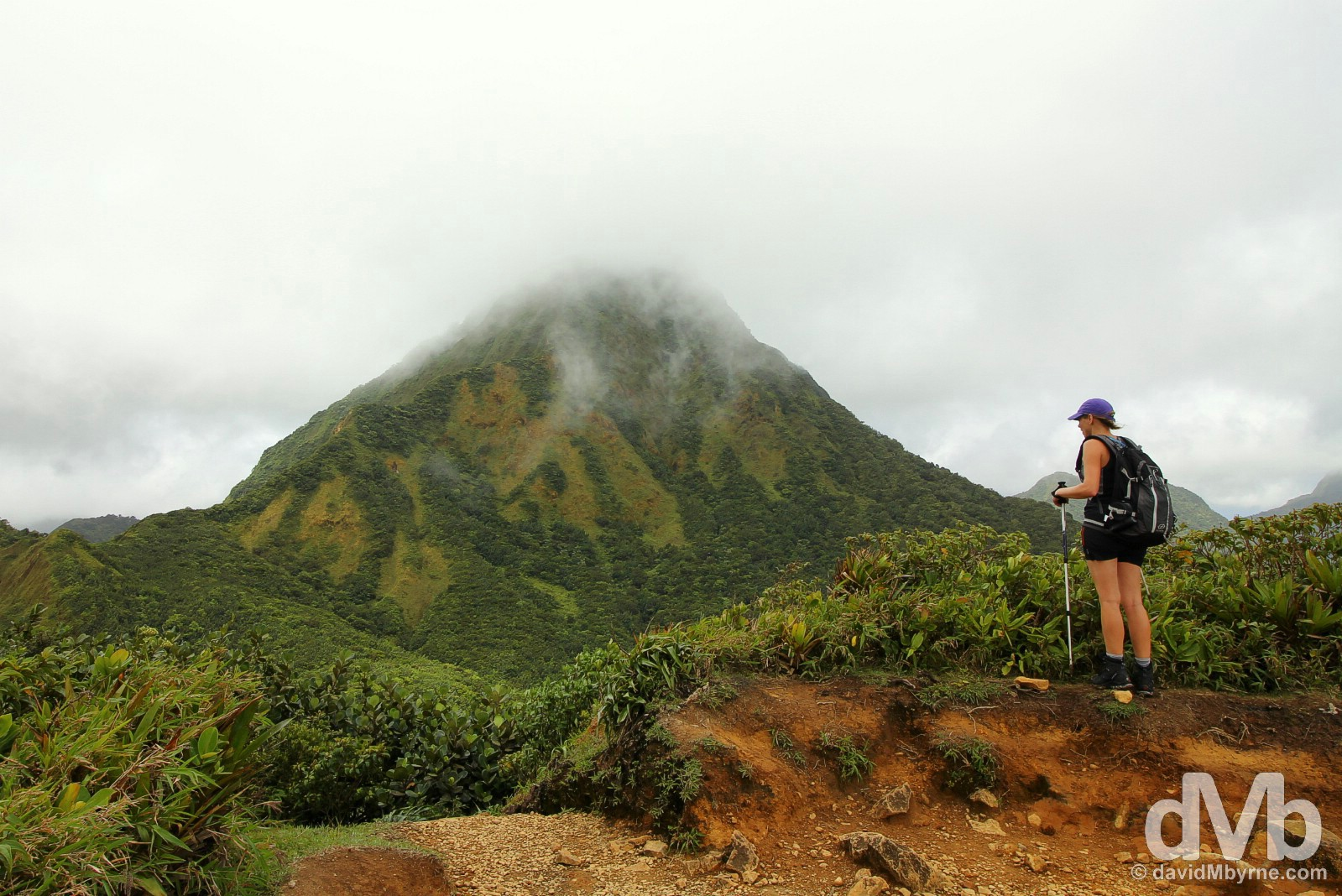 Hiking in Morne Trois Pitons National Park, Dominica, Lesser Antilles. June 11, 2015.