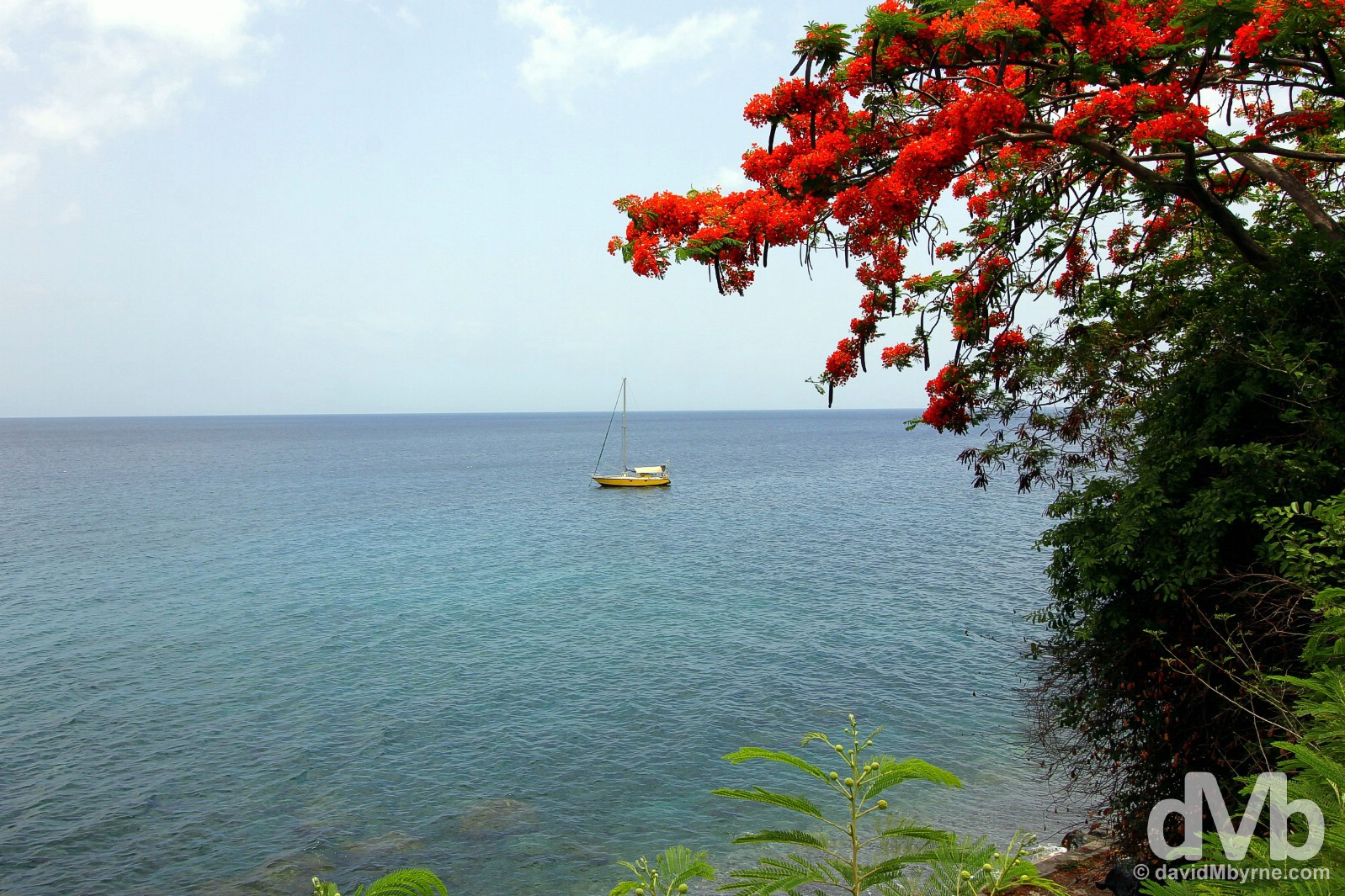A boat offshore of Roseau, Dominica, Lesser Antilles. June 12, 2015.