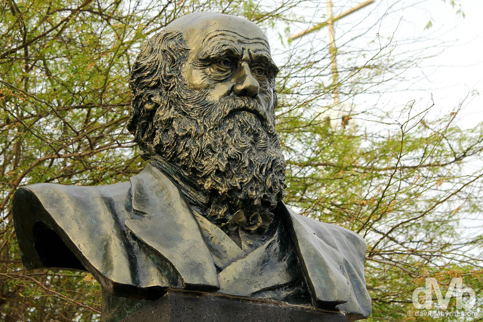 A bust of Charles Darwin on display in the centre of Puerto Villamil on Isla Isabela, Galapagos, Ecuador. July 20, 2015.