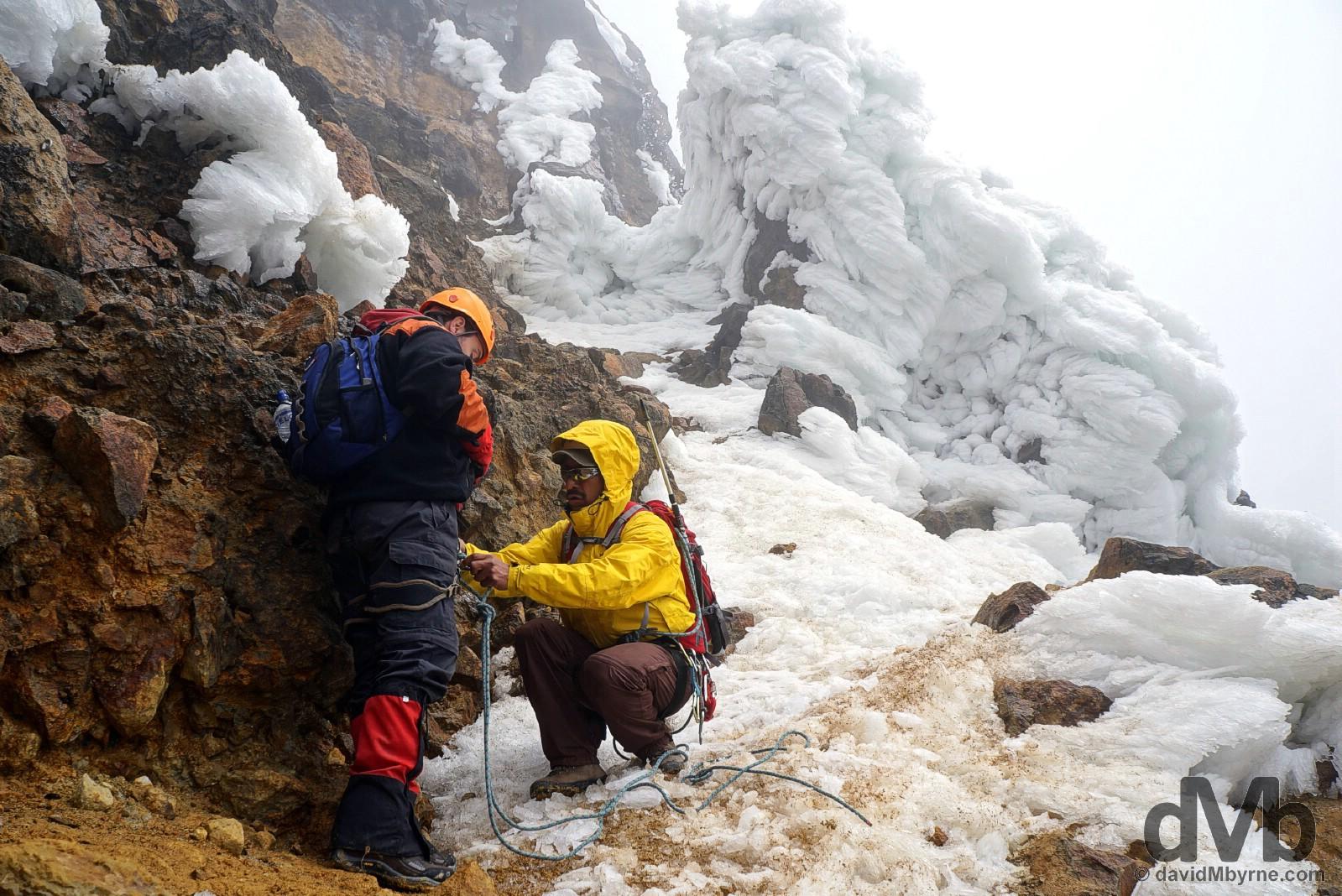 Roping up for the Paso de Muerte (Death Pass) en route to the summit of Iliniza Norte in Reserva Ecologica Los Ilinizas, Ecuador. July 7, 2015.