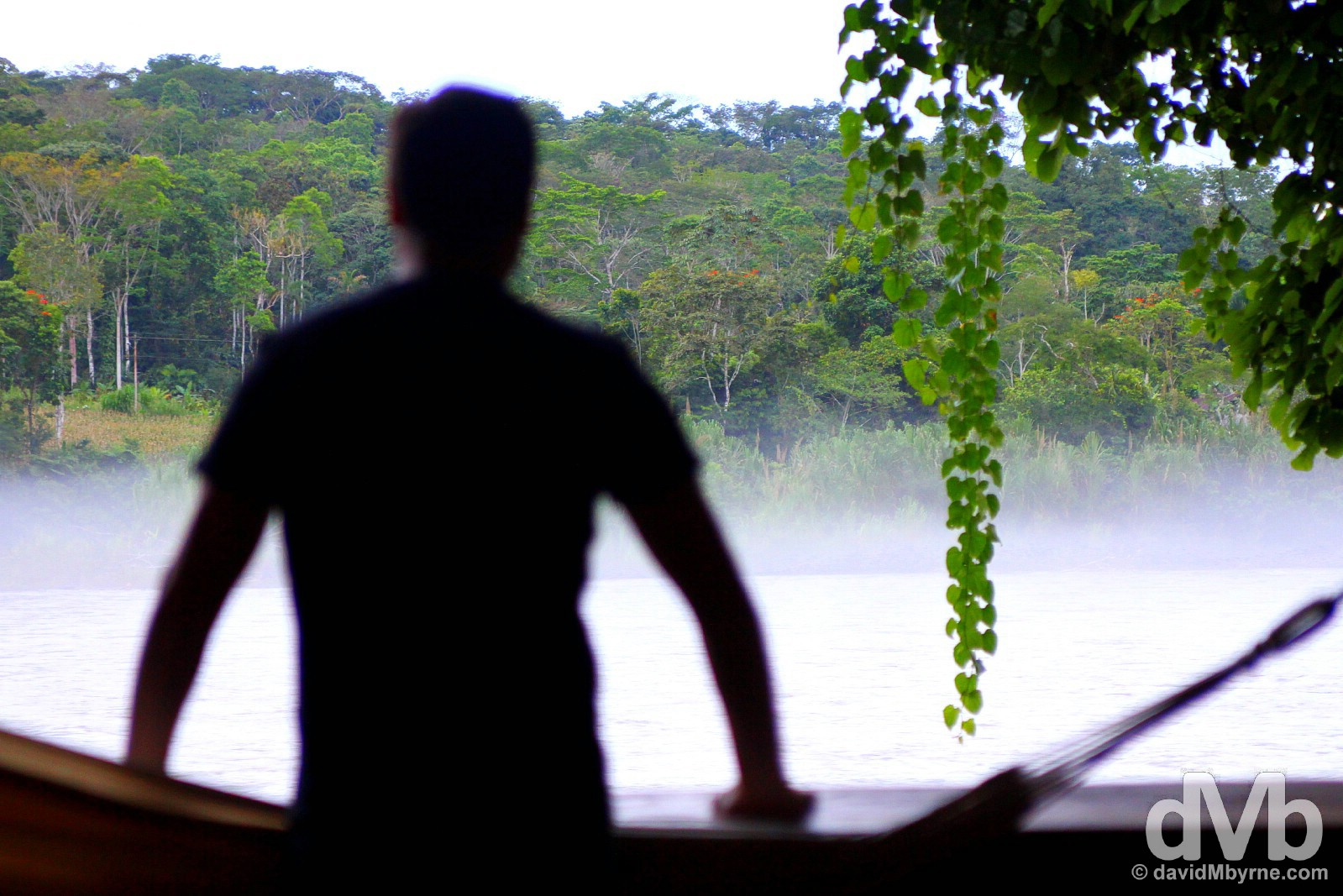Admiring the rain forest & Napo River view from lodge 13 of the Cotococha Amazon Lodge, Ecuador. July 12, 2015.