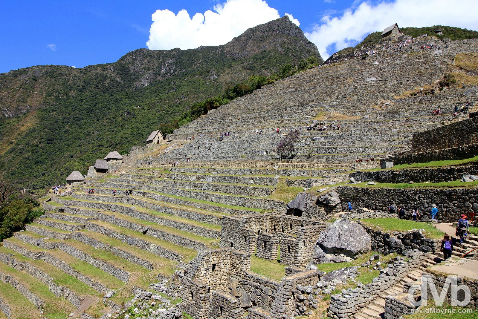 The terraces of the Eastern Agricultural Sector in Machu Picchu, Peru. August 15, 2015.