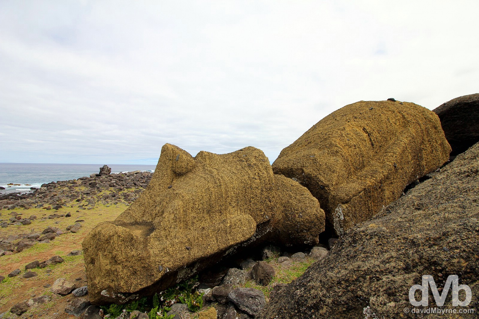 Fallen giant. A toppled moai at One Makihi, Easter Island, Chile. September 29, 2015.