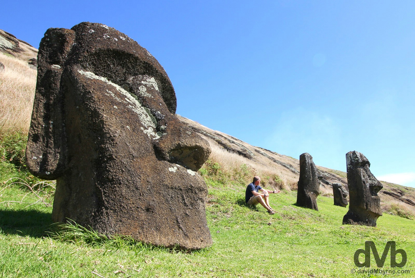 Hanging out in Rano Raraku crater on Easter Island, Chile. October 1, 2015.