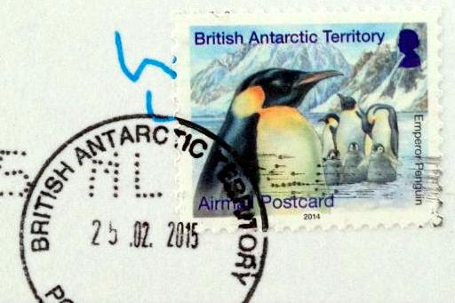 Postcard from Antarctica.