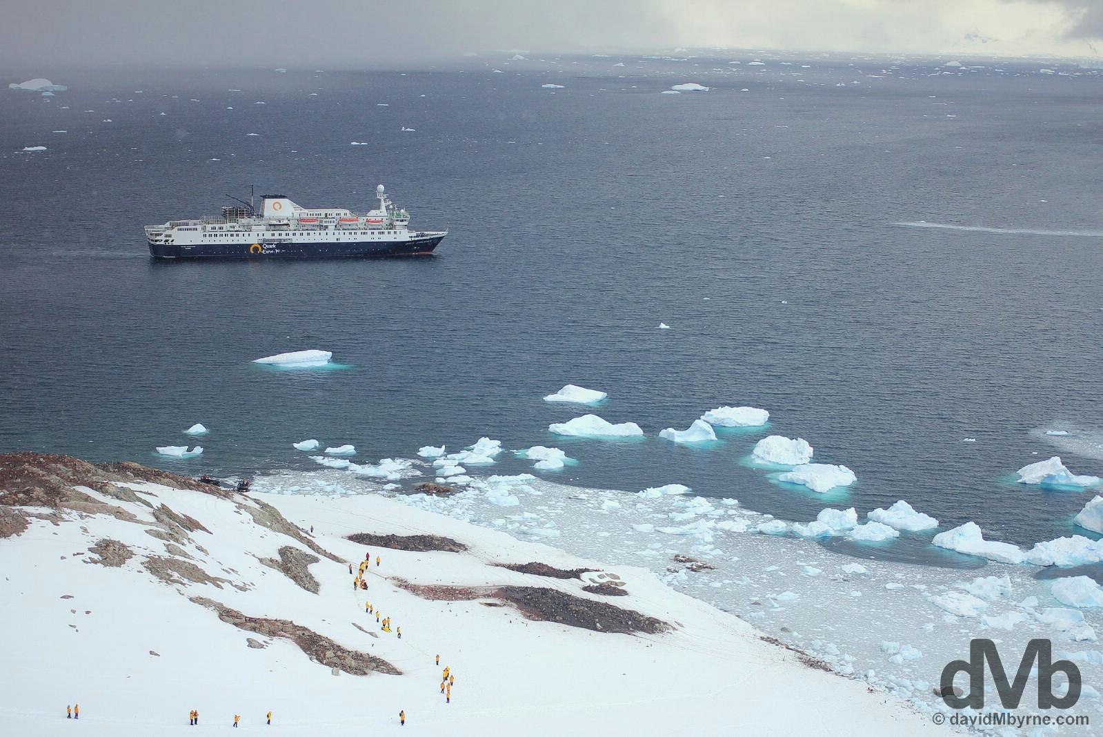 The M/V Ocean Endeavour in Neko Harbour, Antarctic Peninsula. November 30, 2015.